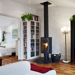poêle à bois appartement